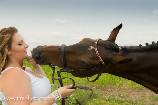 equine photography-3