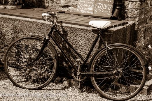 Vintage Bicycle_