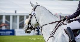 Chatsworth Horse Trials 2015-147