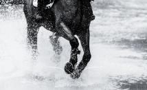 Chatsworth Horse Trials 2015-198
