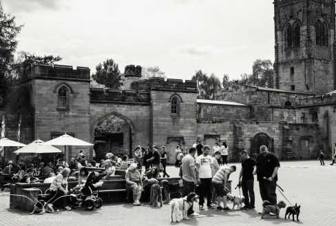 ElvastonCastle_Derbyshire (27 of 34)