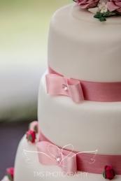 Wedding_RingwoodHall_Derbyshire-85