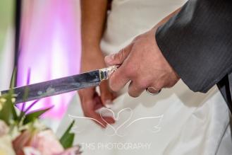 Wedding_RingwoodHall_Derbyshire-98