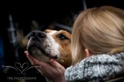 equineeventsphotographer_warwickshire-35