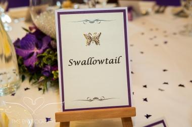 Wedding_Photography_Nottingham_QuornCountryHotel-189