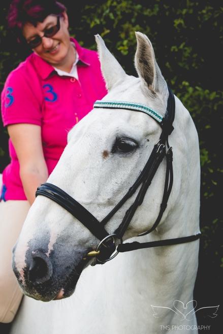 equine_photographer_Derbyshire-42