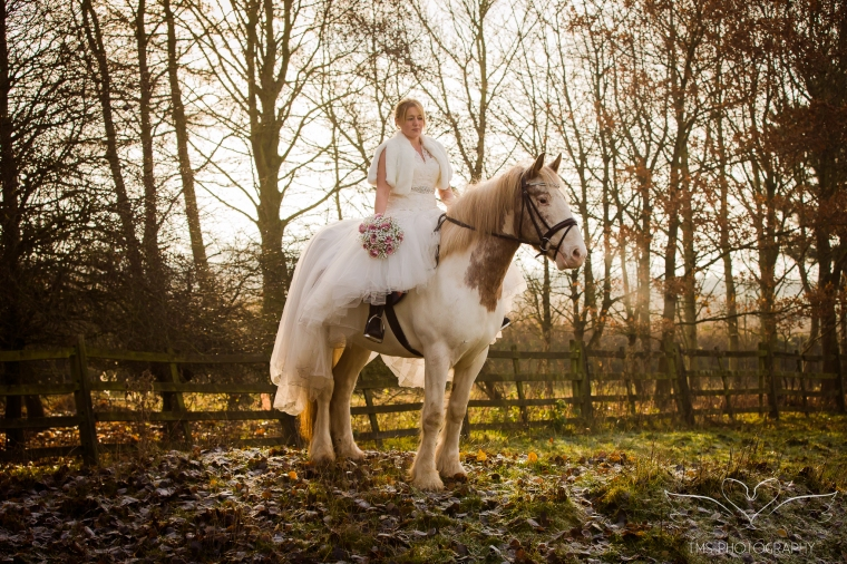equine_Photographer_Leicestershire-26.jpg