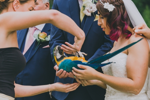 Hull_Wedding-105