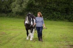 equine_photographer_derbyshire-18