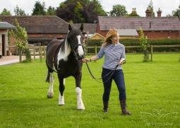 equine_photographer_derbyshire-2